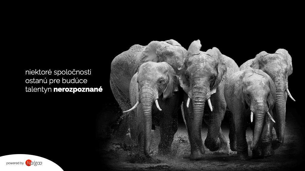 slony ukážka firemnej prezentácie