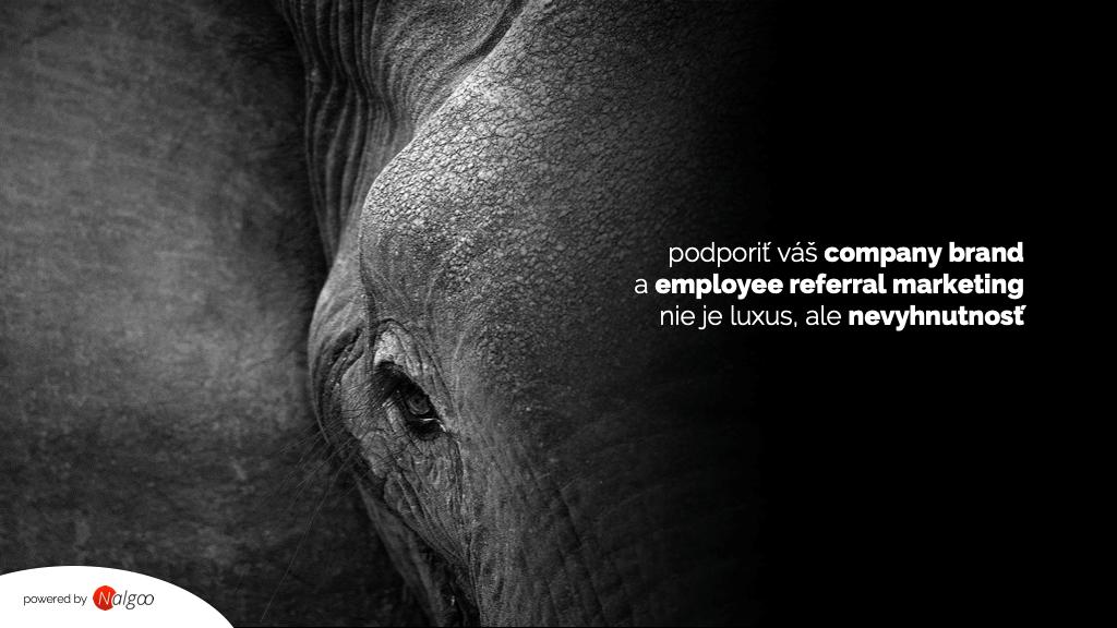 slon ukážka firemnej prezentácie